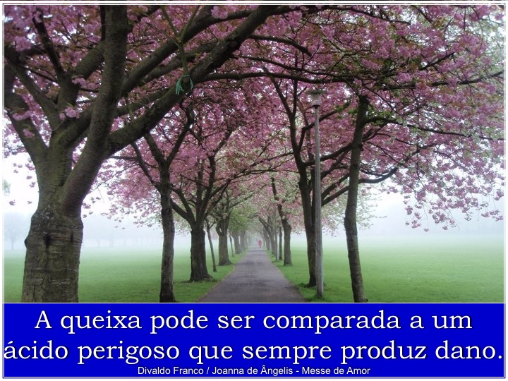 slide016