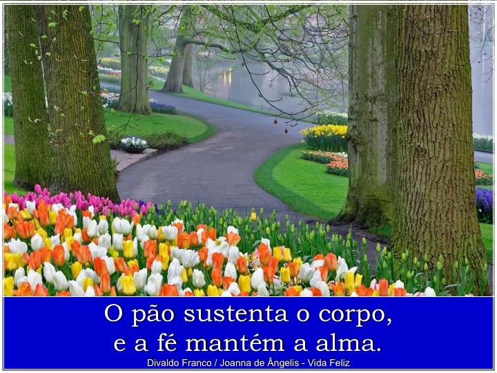 slide041