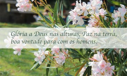 """""""Glória a Deus nas Alturas, paz na Terra para com os Homens""""."""
